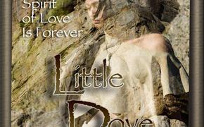 Little Dove Poster - 2009 Lakedance Film Festival, Sandpoint Idaho